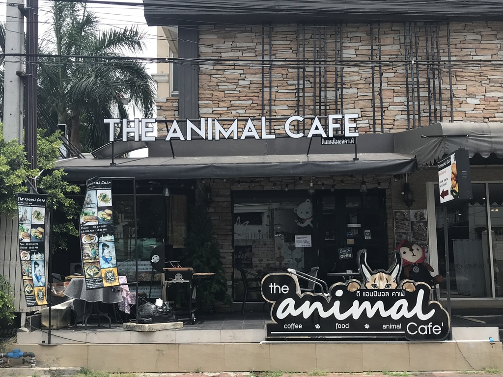 The Animal Cafe